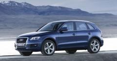 Audi Q5 cũ
