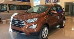 Ford Ecosport: thông số kỹ thuật, hình ảnh, giá bán