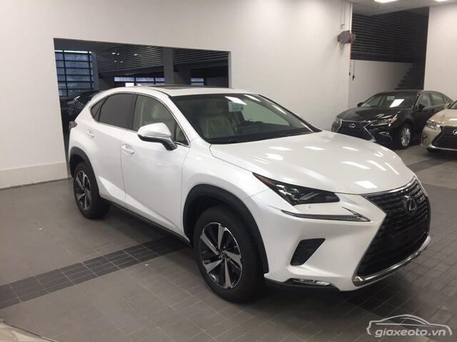 gia-xe-lexus-nx300-2018-2019